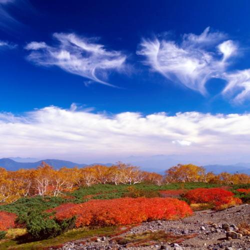 絶景!位ヶ原の紅葉