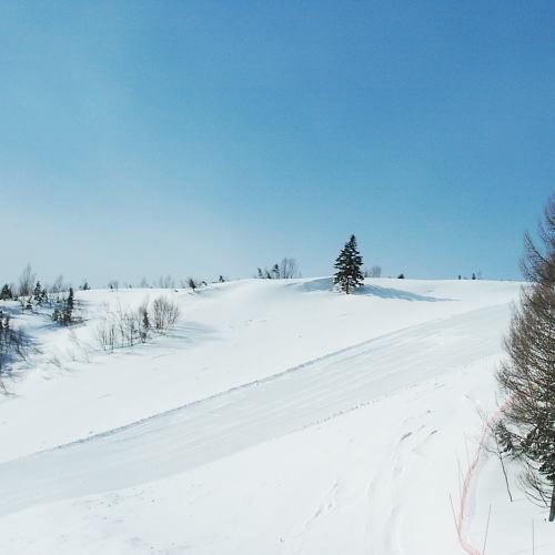 Mt.乗鞍(旧乗鞍高原温泉スキー場)3