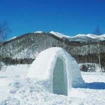 冬の風物詩 かまくら