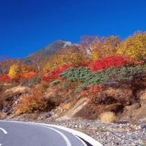 乗鞍岳の紅葉