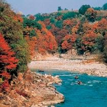 ■紅葉の天竜舟下り