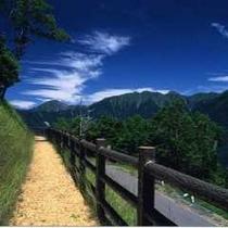 ■夏のしらびそ高原・南アルプスを望む!