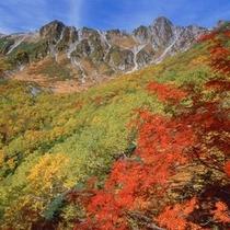 ■紅葉と千畳敷カール