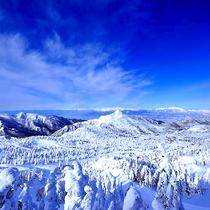 志賀高原の冬