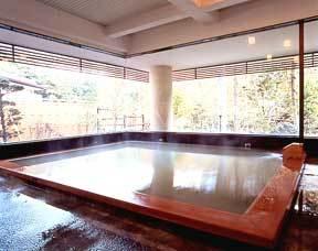 秘湯の宿 元泉館 プランを見る