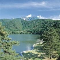 客室から望む大野池湖畔