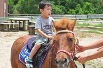 子供 乗馬