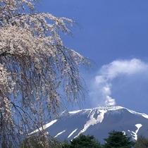 ■春の浅間山