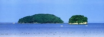 南三陸の海