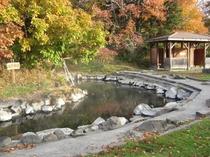 秋の和琴半島、露天風呂