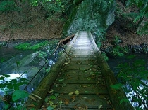 とけん峡のつり橋