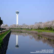 ☆五稜郭タワー☆