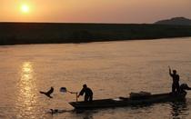 【鵜飼い】例年5月中旬~9月末日まで。筑後川には屋形船が浮かび、夜空の下で鵜匠が鵜を使って漁をします