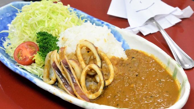 【事前カード決済】能登町小木は日本三大イカ漁港!辛味と酸味が絶妙な味わい「船凍いかカリー」プラン♪