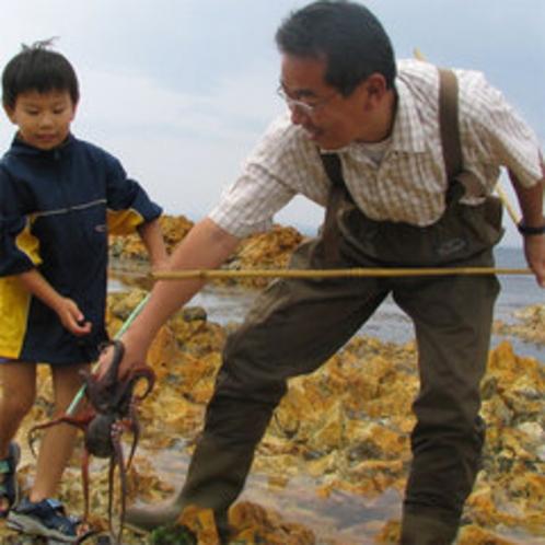 「とったど〜!」お子様大はしゃぎ!能登の秋の風物詩たこすかし漁と採れたて新鮮蛸を食す