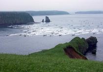 昆布漁出漁風景