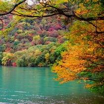 秋 十和田湖の紅葉2