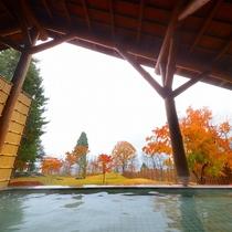 【温泉】十和田湖西湖畔唯一の源泉100%かけ流し露天風呂(秋)