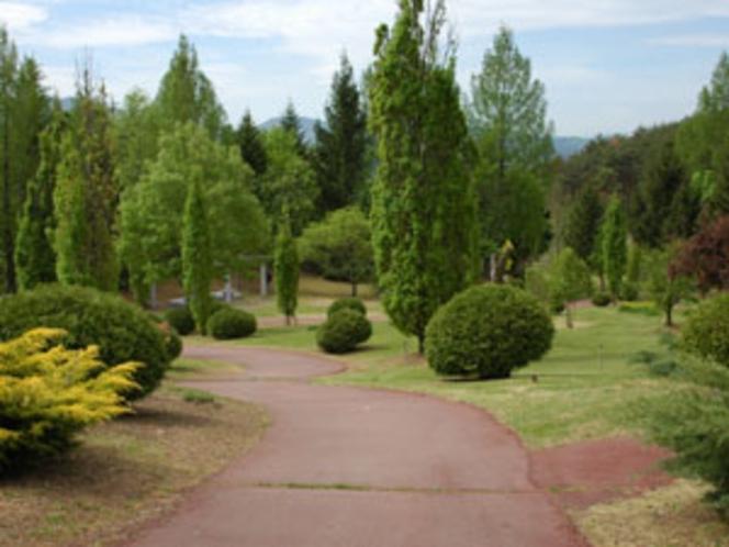 敷地内の庭園の様子