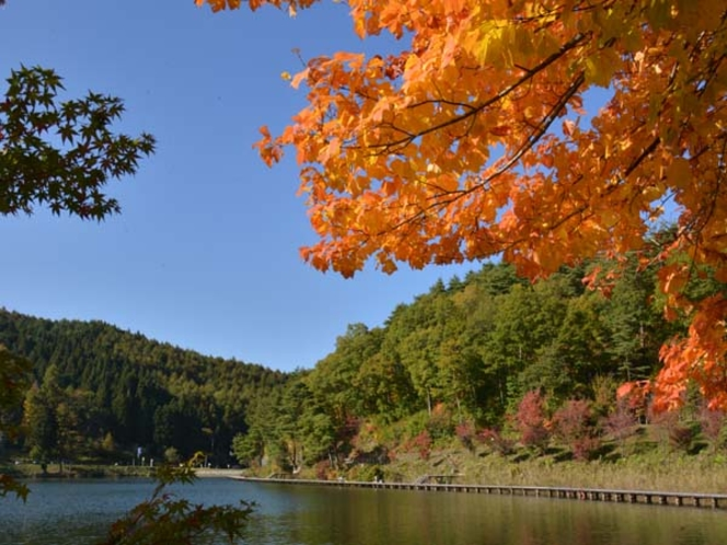 聖湖紅葉イメージ
