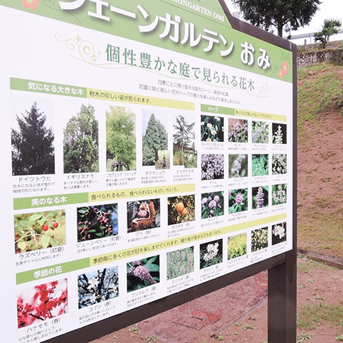 庭園内に咲く花の案内板