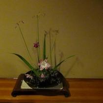 季節の花々2