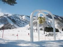 白馬五竜スキー場とおみゲレンデ