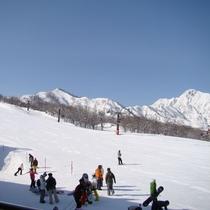 *[白馬五竜スキー場一例]白馬村観光局提供画像
