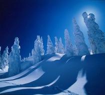 阿仁の樹氷