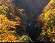 秋の抱き返り渓谷