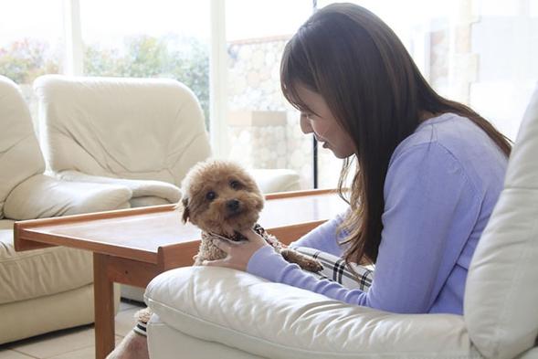 【ペット同宿・夕食付き】ペットさんと一緒!プライベートなお部屋とお庭でのんびりと富士山を満喫♪