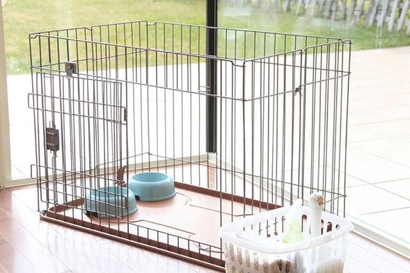 【ペット同宿・2食付き】ペットさんと一緒!プライベートなお部屋とお庭でのんびりと富士山を満喫♪