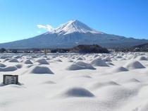 雪の中の富士山