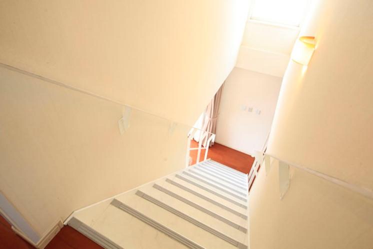 カモミール 階段