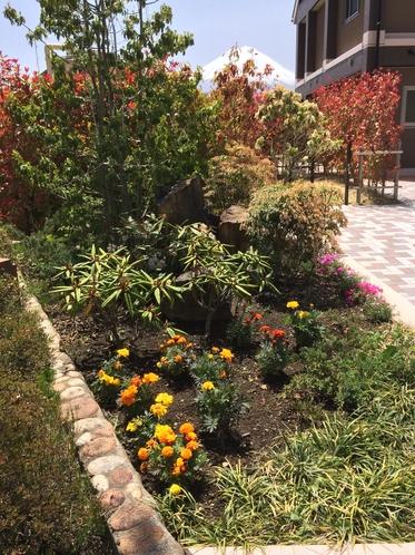 フロント前花壇