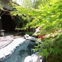 岩露天風呂 春の風景