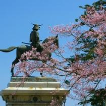 伊達政宗像と桜