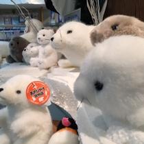 【ショップ モンタナ】かわいい動物たちもお待ちしております♪