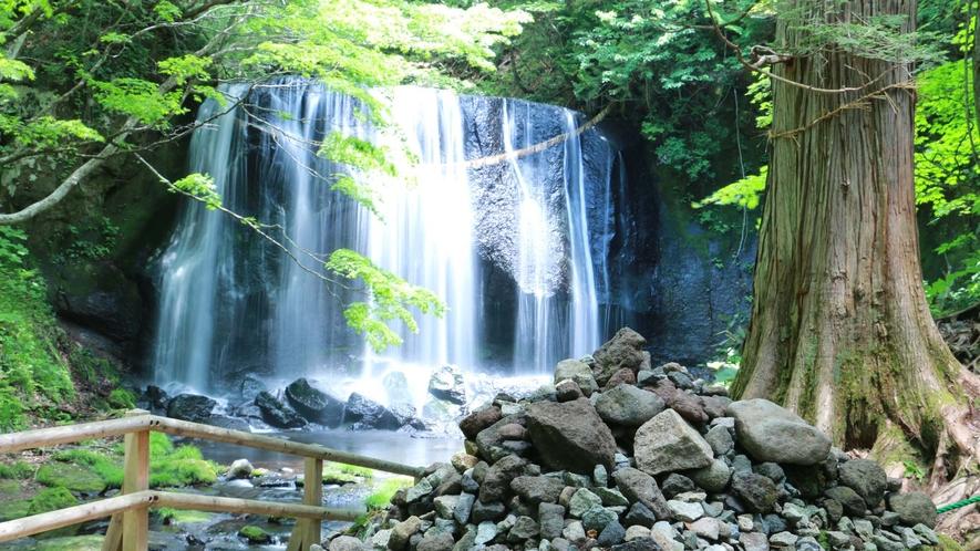 ■周辺観光/達沢不動滝_鬱蒼と繁る樹木に囲まれ、普段は荘厳な雰囲気が漂う名瀑。