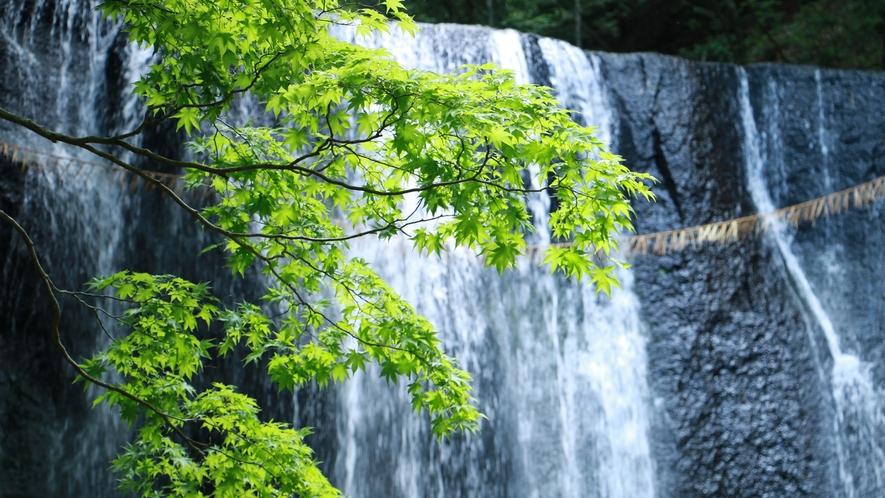 ■周辺観光/達沢不動滝_岩肌に沿って水がスダレのように流れ落ちる姿が美しい。