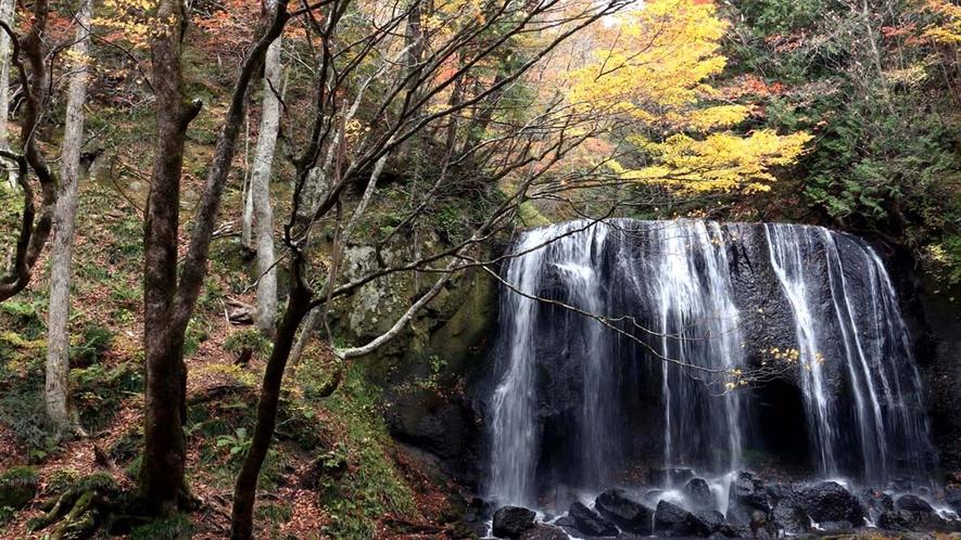 ■周辺観光/達沢不動滝_紅葉の時期には特に美しく多くの見物客が撮影に訪れます。
