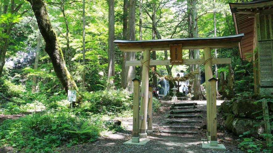 ■周辺観光/達沢不動滝_荘厳な雰囲気が漂う名瀑の滝元には不動尊を祀っています。