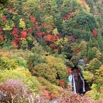 横谷渓谷の紅葉