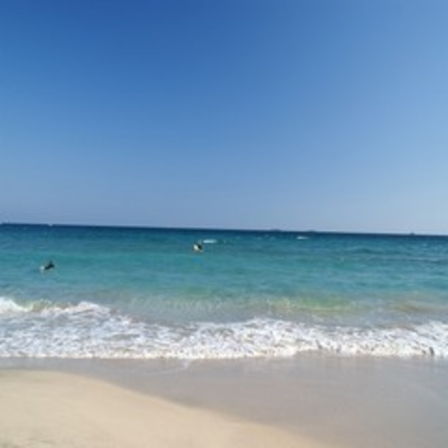 南伊豆の海はどこも「水質AA」の最高評価【多々戸浜】