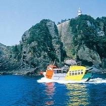 【石廊崎遊覧船】雄大な景色ときれいな海辺が見られる♪
