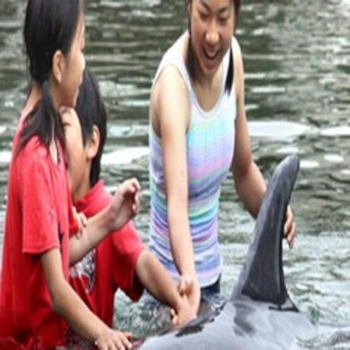 【観光情報】下田海中水族館(山海から車10分)
