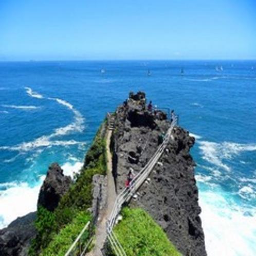 【石廊崎】伊豆最南端の地!100メートルの高さからの断崖絶壁は一見の価値あり♪