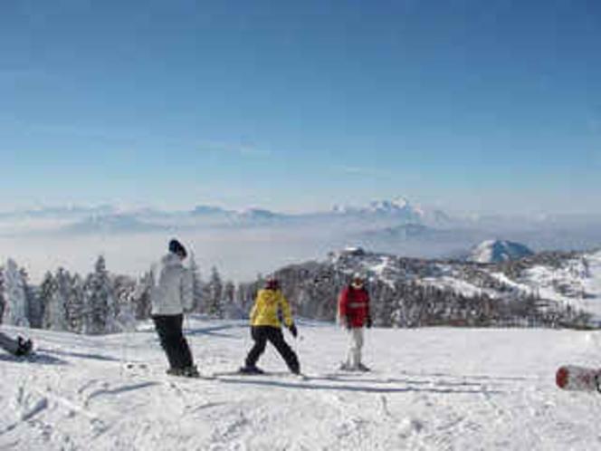 家族スキー
