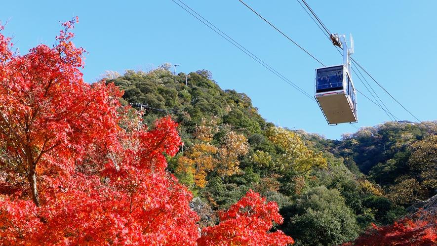 ◆金華山ロープウェイ(車で約15分)◆