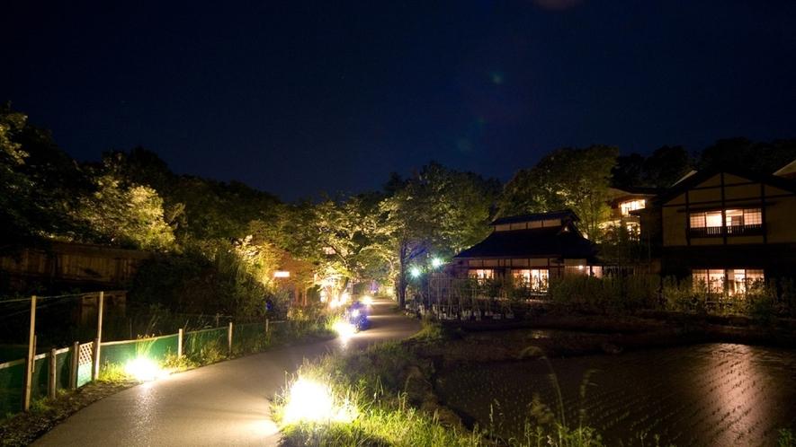 灯りがともった夜の里山